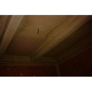 http://www.decorazionigraziano.it/vetrina/53-143-thickbox/ripristino-soffitti.jpg